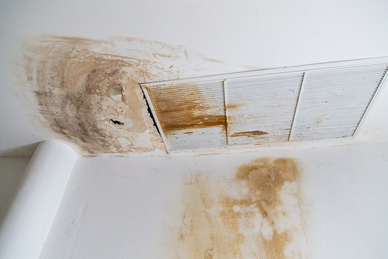 XMAN Inc. - Experts in Mold Removal, Air Sampling & Inspections