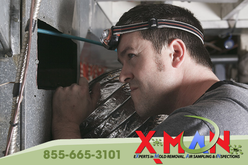 Air Quality Testing and Mold Sampling with XMAN